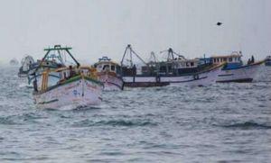 trawlers in sea_ indian